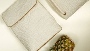 Pineapple Leather: An Eco-friendly Alternative