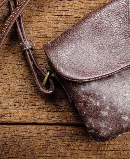 handbag odour removal toronto